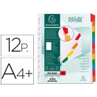 Separador exacompta cartolina branco conjunto de 12 separadorespestanas coloridas a4+ multiperfurado