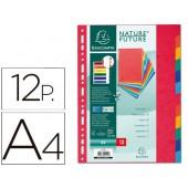 Separador exacompta cartolinaconjunto de 12 separadores de cores a4multiperfurado