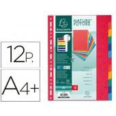 Separador exacompta cartolinaconjunto de 12 separadores de cores a4+ multiperfurado