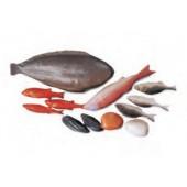 Saco de 12 peixes 41070