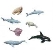 Animais marinhos 27460