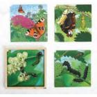 Puzzle de crescimento da borboleta - 2203542