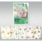 Papel prensado com flores 14560099
