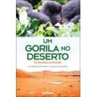 Um gorila no deserto - da namíbia ao ruanda
